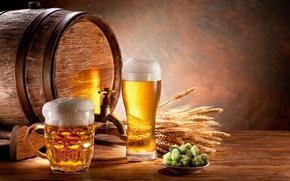 beer, light, foam, mug, goblet, barrel, ears, malt, hop