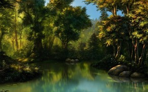 Art, forest, swamp, water, stones, thicket