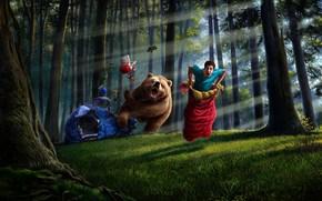 艺术, 家伙, 睡袋, 承担, 帐篷, 事情, 森林, 树