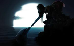 ragazza, delfino, luna, Uccelli, acqua