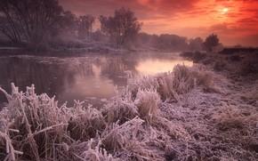 великобритания, река, закат, иней, солнце, осень