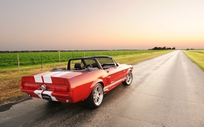 ford, Mustang, Shelby, Cabriolet, back view, Tuning, red, band, road, field, sky, ford