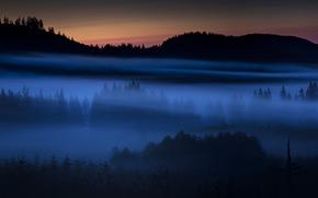notte, campo, nebbia, paesaggio