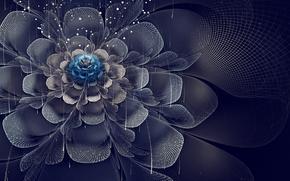 Arte, fiore, Petali, netto