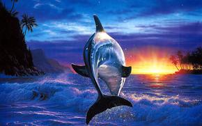 delfino, mare, blu, acquario, profumatamente