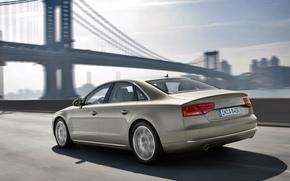Audi, bridge, city, Audi