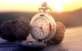 часы, карманные, циферблат, грибы, трюфели, солнце, цепочка, поверхность