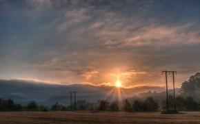 mattina, campo, alberi, giro, Filo, Pilastri, nebbia, sole, nuvole, sole