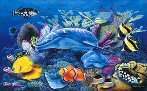 delfino, mare, blu, acquario, profumatamente, pesce