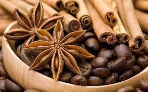 anise, star anise, cinnamon, Spices, coffee, grain
