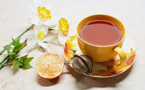 стол, блюдце, чашка, чай, напиток, сеточка, апельсин, цветы