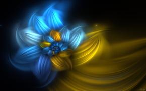 цветы, космос, мечты
