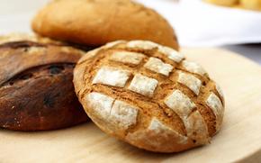 pane, intorno, grigio, segale, cibo