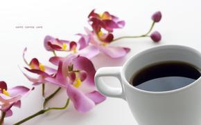 кофе, орхидея, романтика