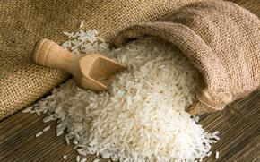 bag, spatula, table, rice