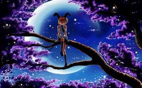 Arte, notte, luna, ragazza, albero, seduta, ramo, fiori, Fireflies, orecchie, un po 'di, forma, risata, emozioni