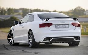 Audi, compartiment, Vue arrire, Mise au point, blanc, Disques, fond, Audi