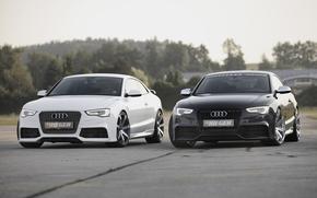 Audi, scomparto, anteriore, Sintonia, bianco, nero, Unit, sfondo, Audi