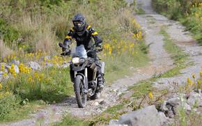 BMW, motocicletta, anteriore, Biker, motociclista, strada, fiori, erba, motocicli