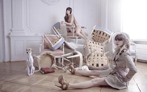 модели, девушки, собака, позирование, стулья, интерьер, обстановка