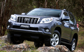 Toyota, Land, Cruiser, Prado, TLC Prado, Land Cruiser, Car, wallpaper, Japan, Australian version, Australia, grass, stones, toyota