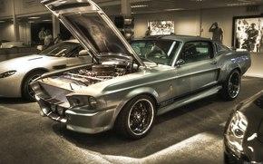 форд, шелби, машина, мечта, Ford