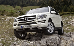 Mercedes Benz, Chapter, jeep, SUV, front, white, stones, forest, mercedes