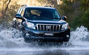 Toyota, Land, Cruiser, Land Cruiser, TLC Prado, Car, wallpaper, SUV, Yaponiya.Avstraliya, Australian version, toyota