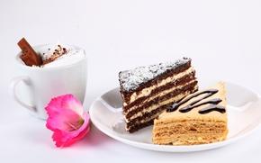 cake, pieces, cake, dessert, sweet, cream, glaze, baking, cappuccino, cinnamon, flower