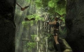Cuevas, Lara