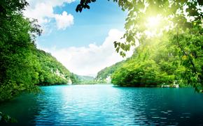 Озеро, деревья, густой лес, море, небо, облака, красивая природа, пейзаж, солнечный свет