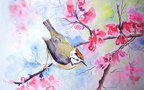 bird, tree, watercolor