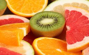 kiwi, grapefruit, lime, oranges, fruit