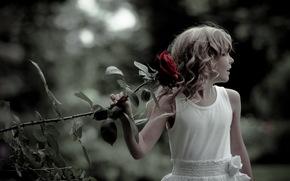 girl, rose, mood