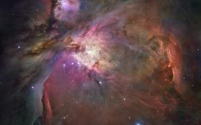 созвездие Ориона, туманность, звезды