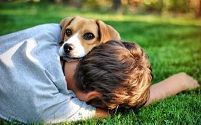 парень, мальчик, собака, пёс, друг