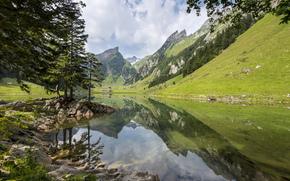 Natur, See, Gebirge, Alpen, Wald