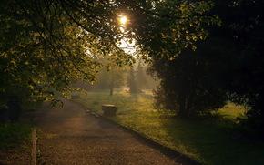 city, park, sunset, bench, landscape, light