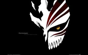 bleach, mask, Shinigami