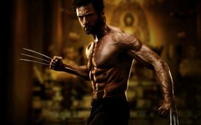 Росомаха, Люди X, X-Men, Хью Джекман, Hugh Jackman, Logan, Wolverine, актер, супергерой, торс, мышцы, когти, фильм, фильмы, кино