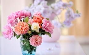 Flowers, bouquet, orange, pink, vase, water