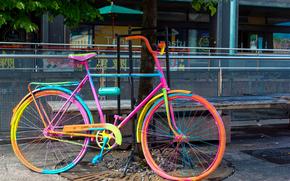 jaspeado, bicicleta, balonchik, pintar, rbol, calle