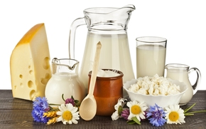 milk, cheese, cheese, sour cream, dairy produce, Flowers