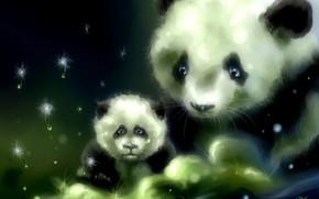 Art, porter, panda, cub, herbe, pissenlit, susciter