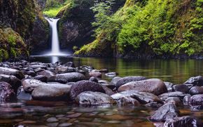nature, waterfall, creek, river, forest