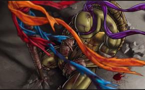 Teenage Mutant Ninja Turtles, donatello, hero, fantasy
