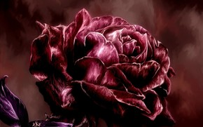 арт, роза, живопись, красная, лепестки