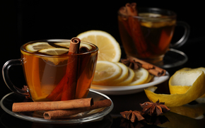 saucer, cup, cinnamon, star anise, lemon, peel, slices, drink