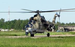 крокодил, вертолет, транспортно-боевой, аэродром, трава