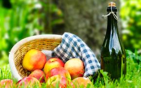 erba, cestino, tovagliolo, vino, mele, picnic
